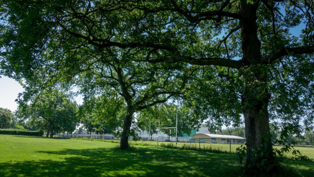 Lafourguette - Au bord du terrain de rugby