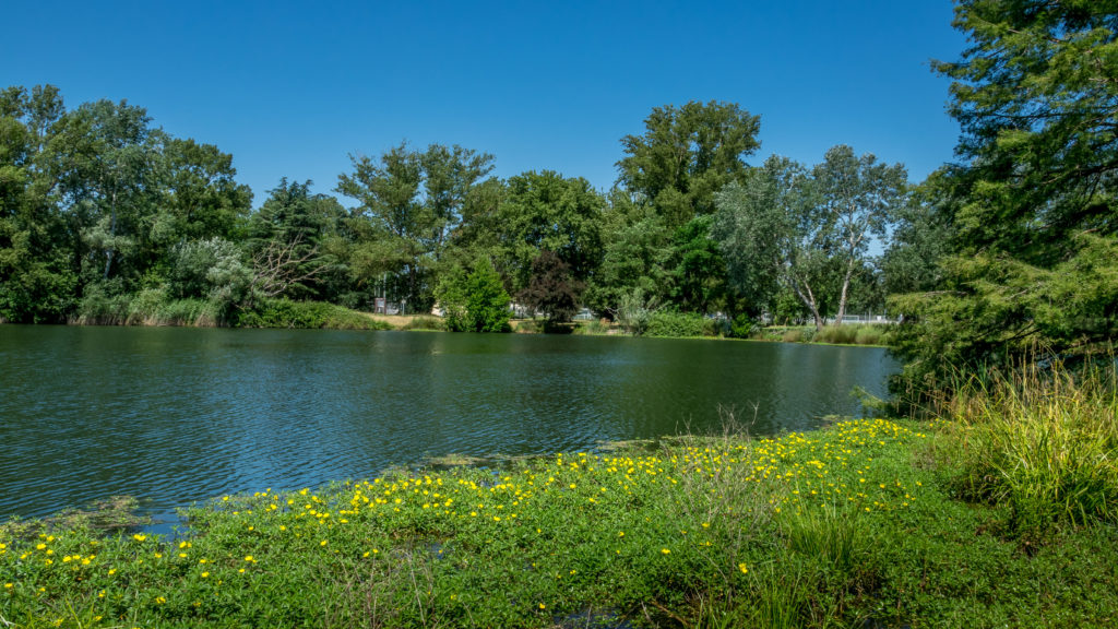 Lafourguette - Le lac de Gironis au printemps